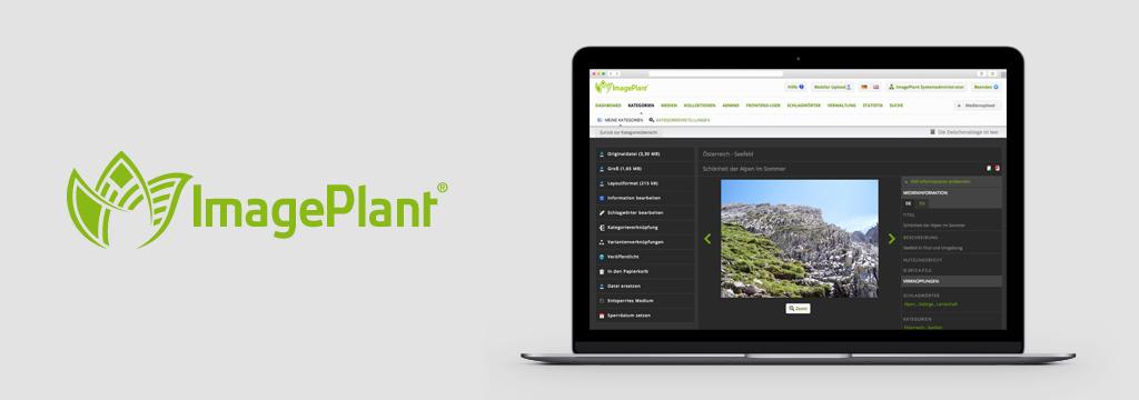 Multimedia-Datenbank-Software - ImagePlant